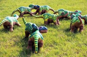 Hier eine Herde von freilegenden Pleos.