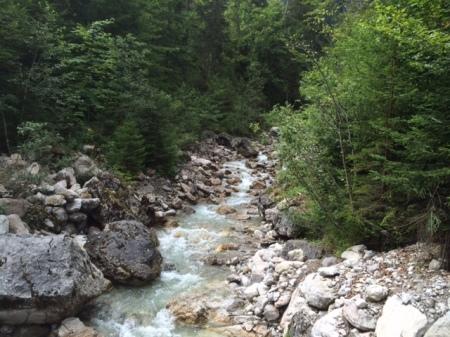 Der Eckbach im Naturschutzgebiet Allgäuer Hochalpen zählt zu den letzten unverbauten Wildbächen im Oberallgäu.