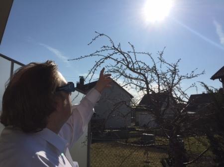 Ich genoss die Sonnenfinsternis im Garten.