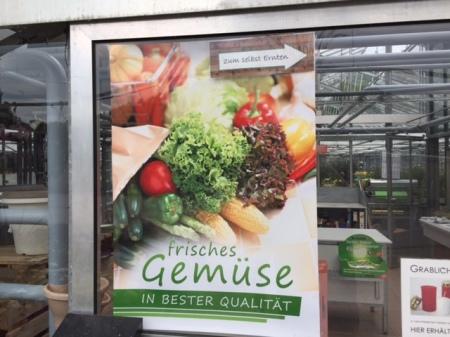 Tolle Idee der Gärtnerei Gruber aus Nesselwang.