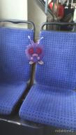 Pokemon_4934