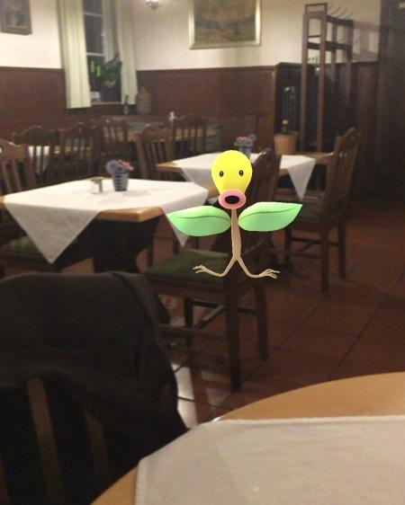 Ein Pokemon trieb sich auch rum.
