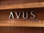Avus_3358