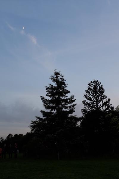 Der Mond über Stanley Kubricks Grab. Foto: Lange