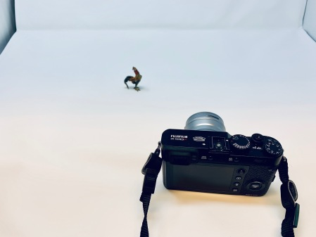 Es galt die Hahn-Sammlung der Gattin zu fotografieren.